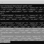 audit-plugin1